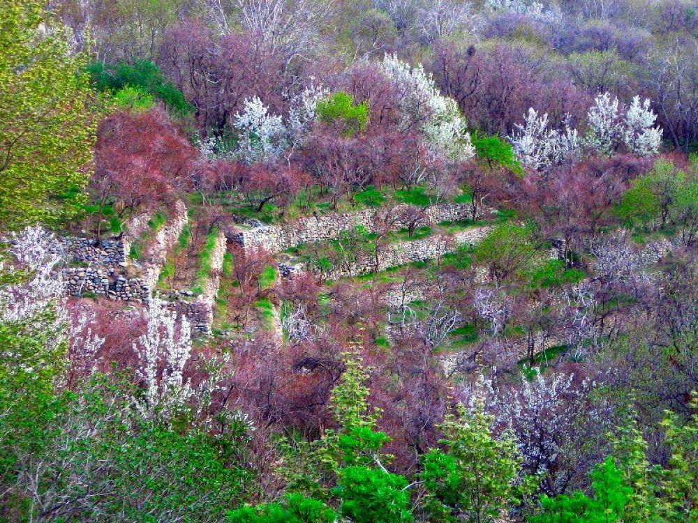 Spring Kan Road_Iran by AmirAli Ranvar