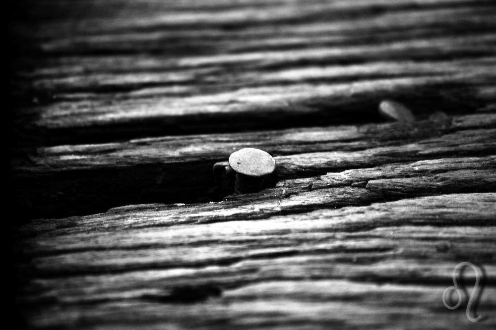 stuck ... by Aleksandra Bijelic