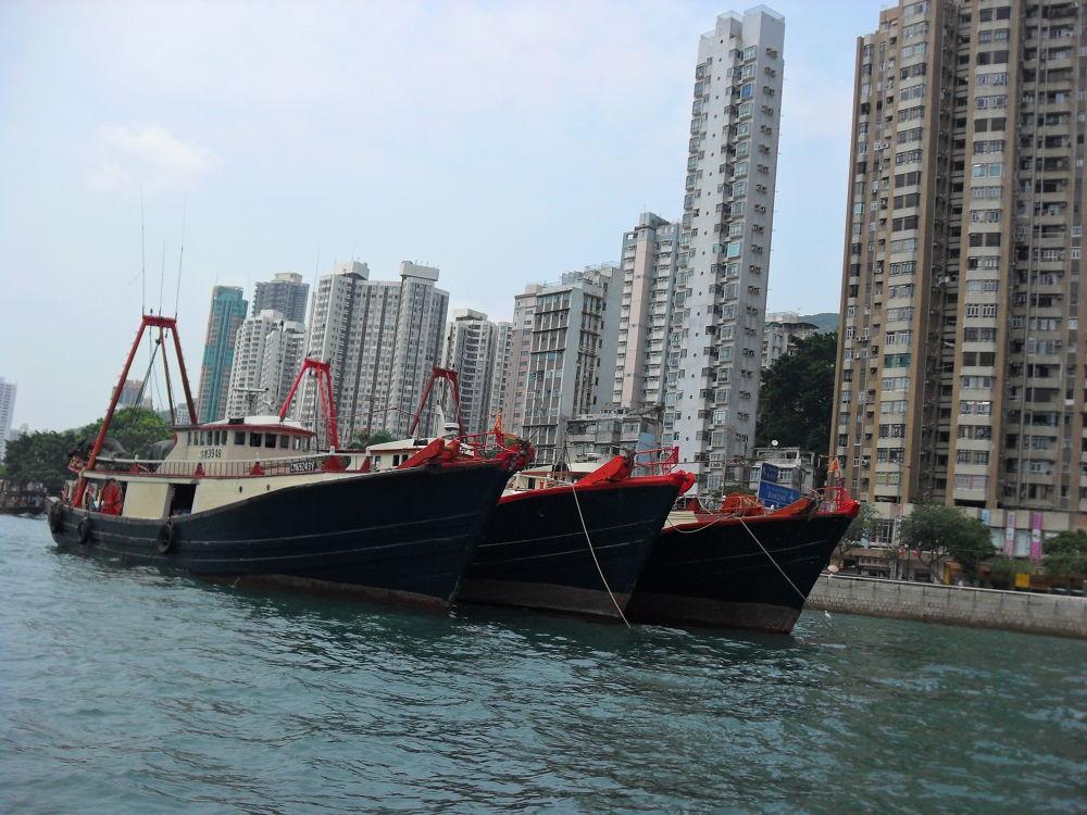 SDC10056 Hong Kong by gavriealzohar