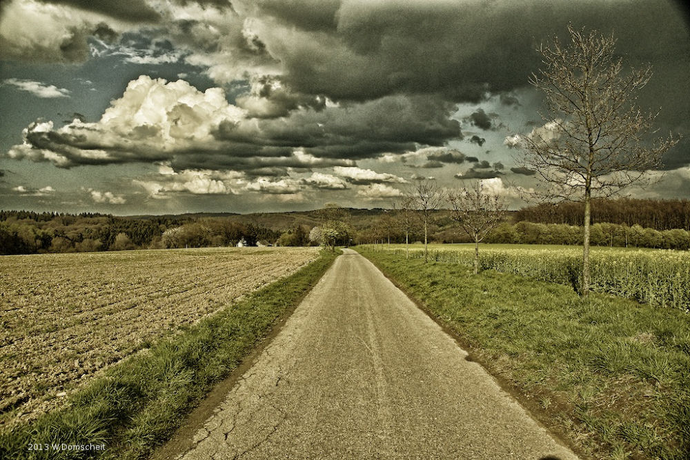 On the road by wolfdomscheit