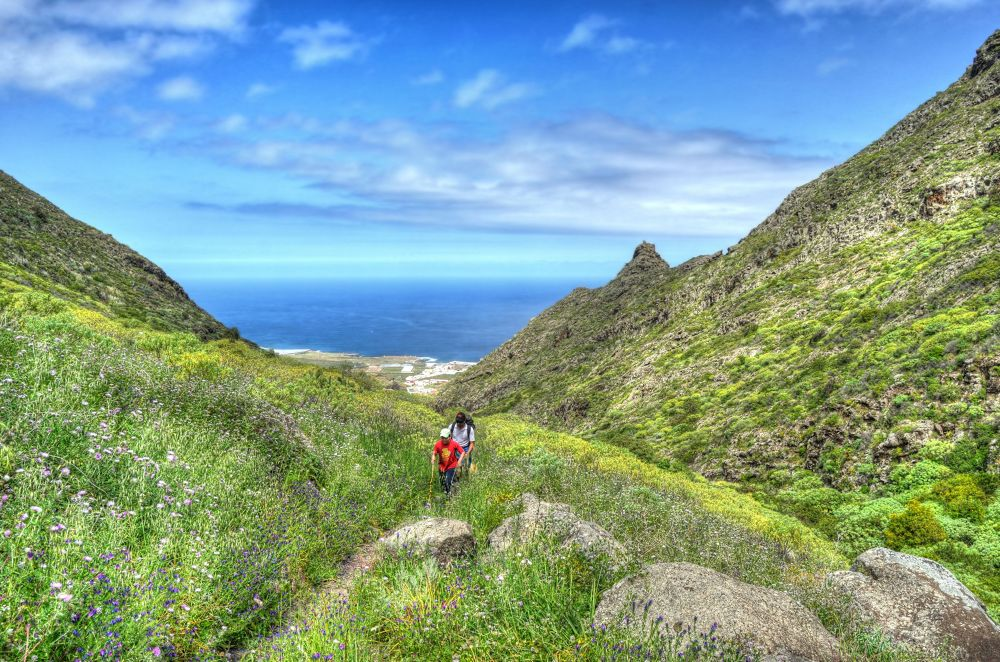 Photo in Landscape #tenerife #canary island #hdr