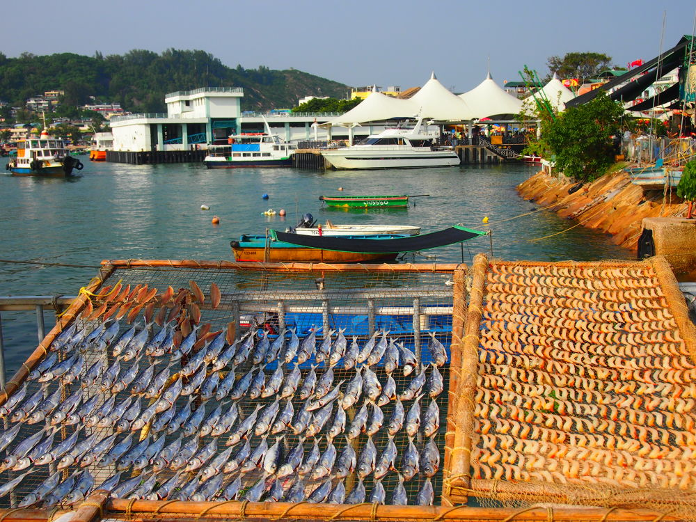 Fishing Foods in Island (2013) by Mickey Lee