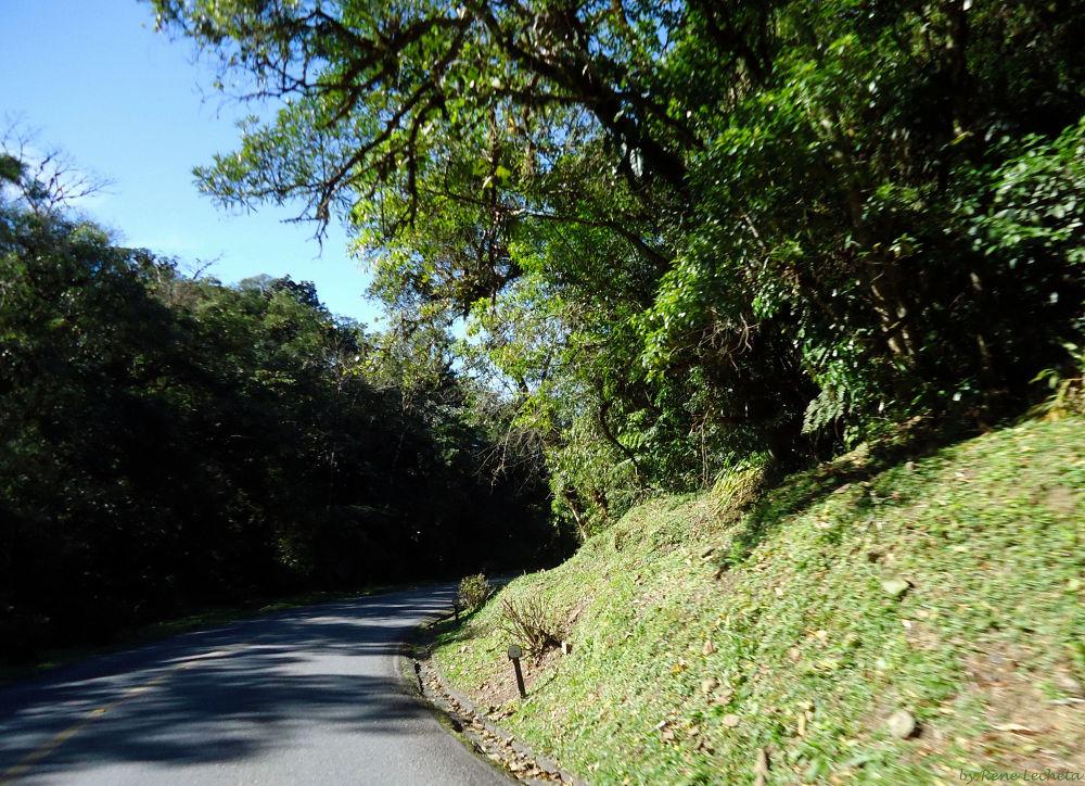 Estrada da Graciosa by renelecheta