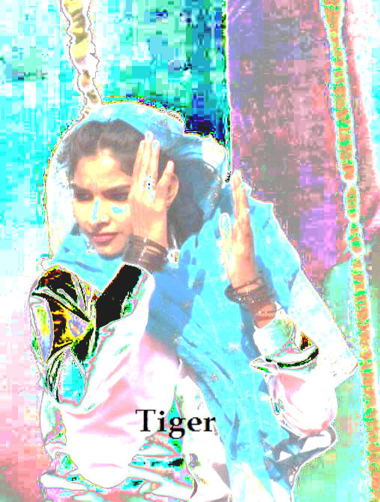 indian culture by tigaer007