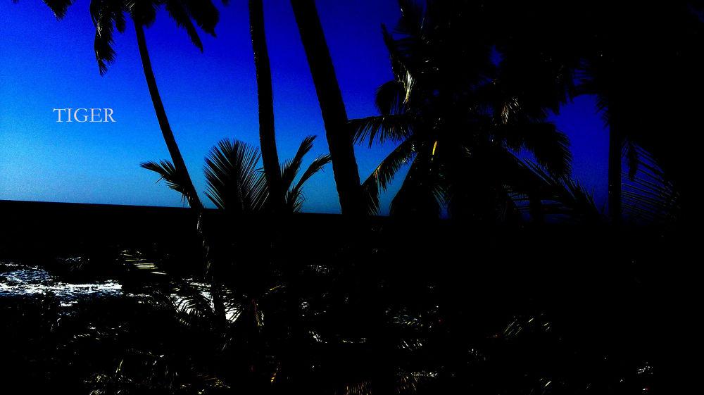 anjuna beach goa by tigaer007