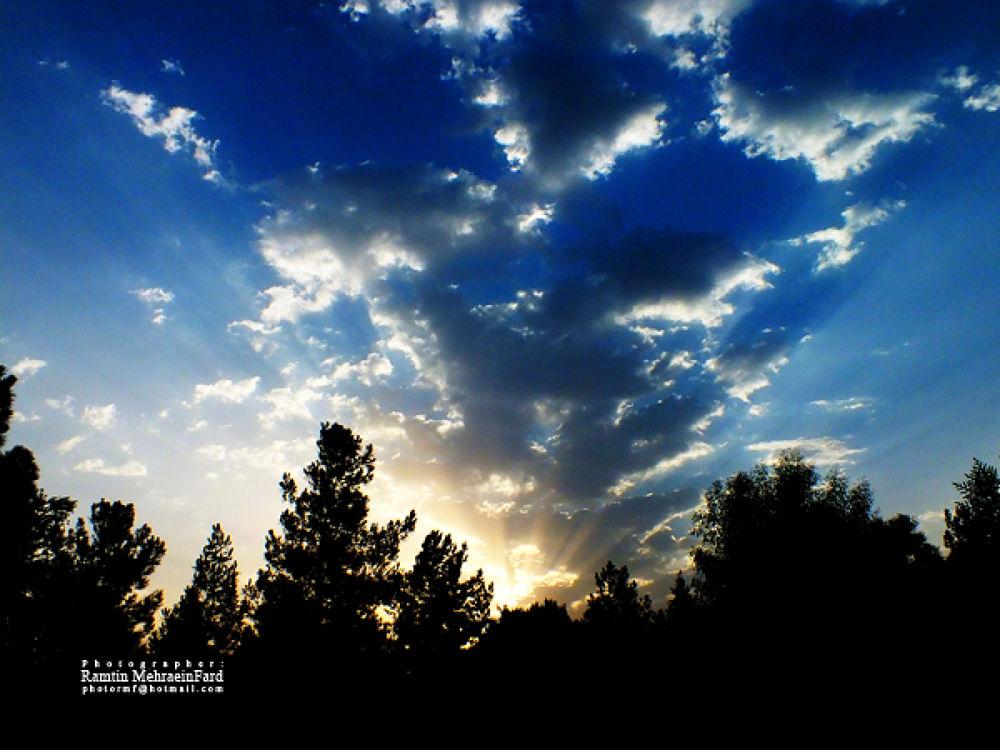 sunshine by Ramtin MehraeenFard