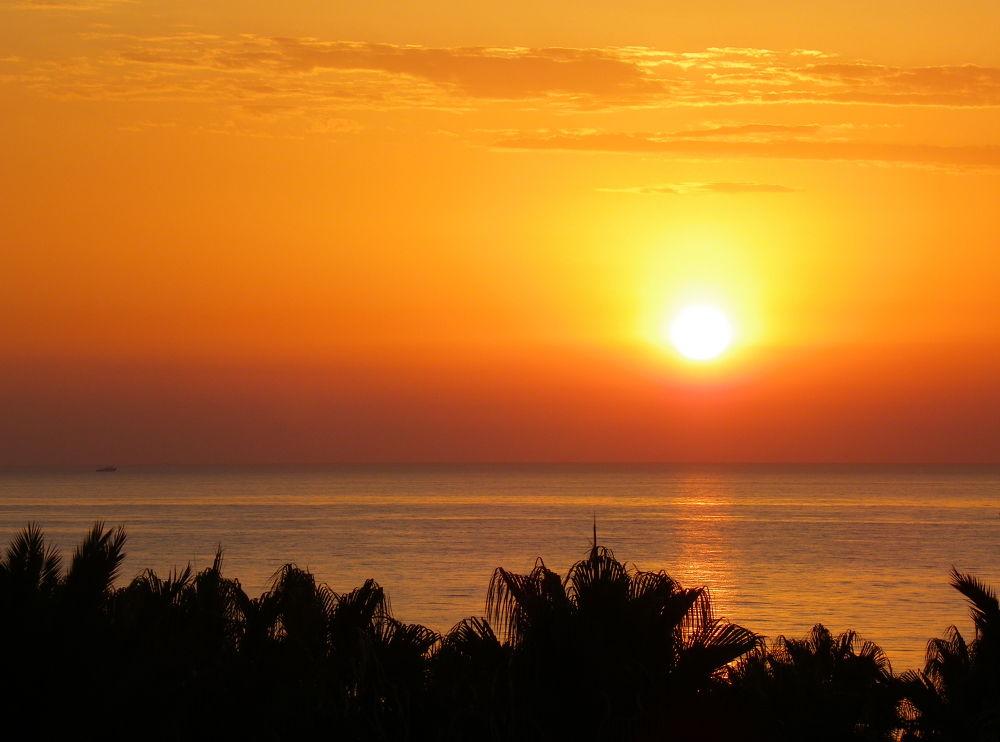 sunrise by Kasia Trafiał