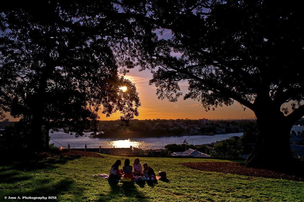 Photo in Random #ypa2013 #landscape #sunset #scenery #friendship #friends #trees #inspiration #picnic #sydney #australia #nsw #park #views #sun #beauty