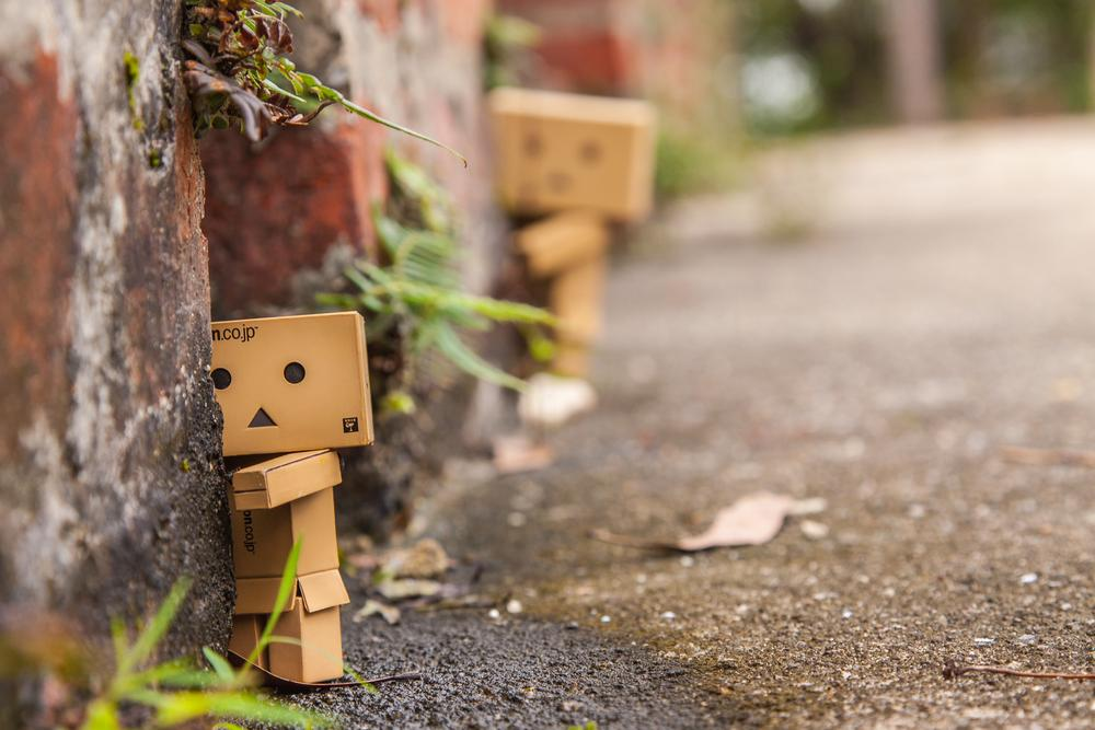 danboard by polam