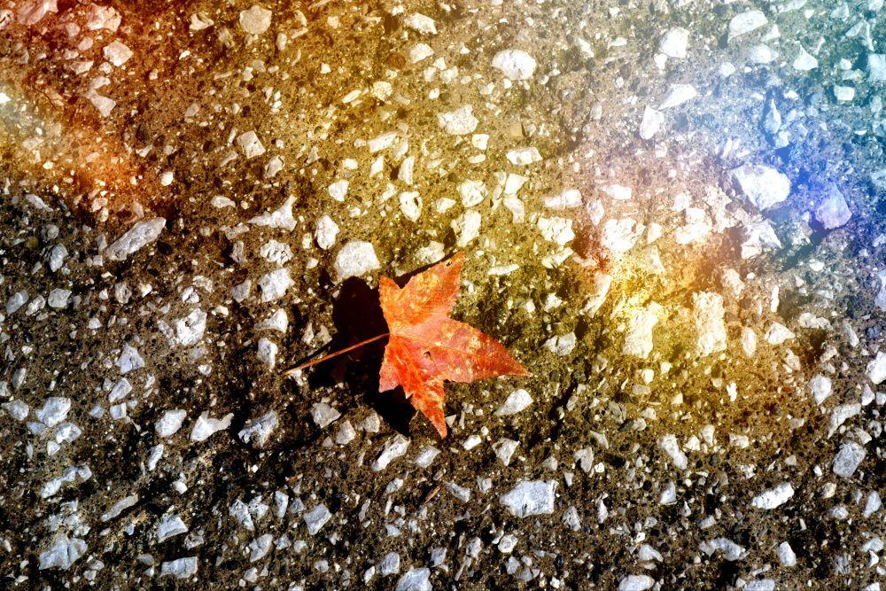 October... by palumbina
