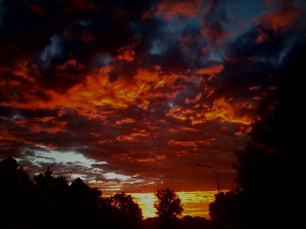 Blazin' Skies by Angie Hall