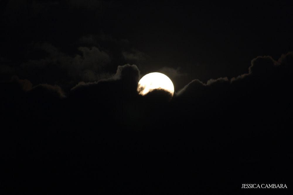 Moon by Jessica Cambara