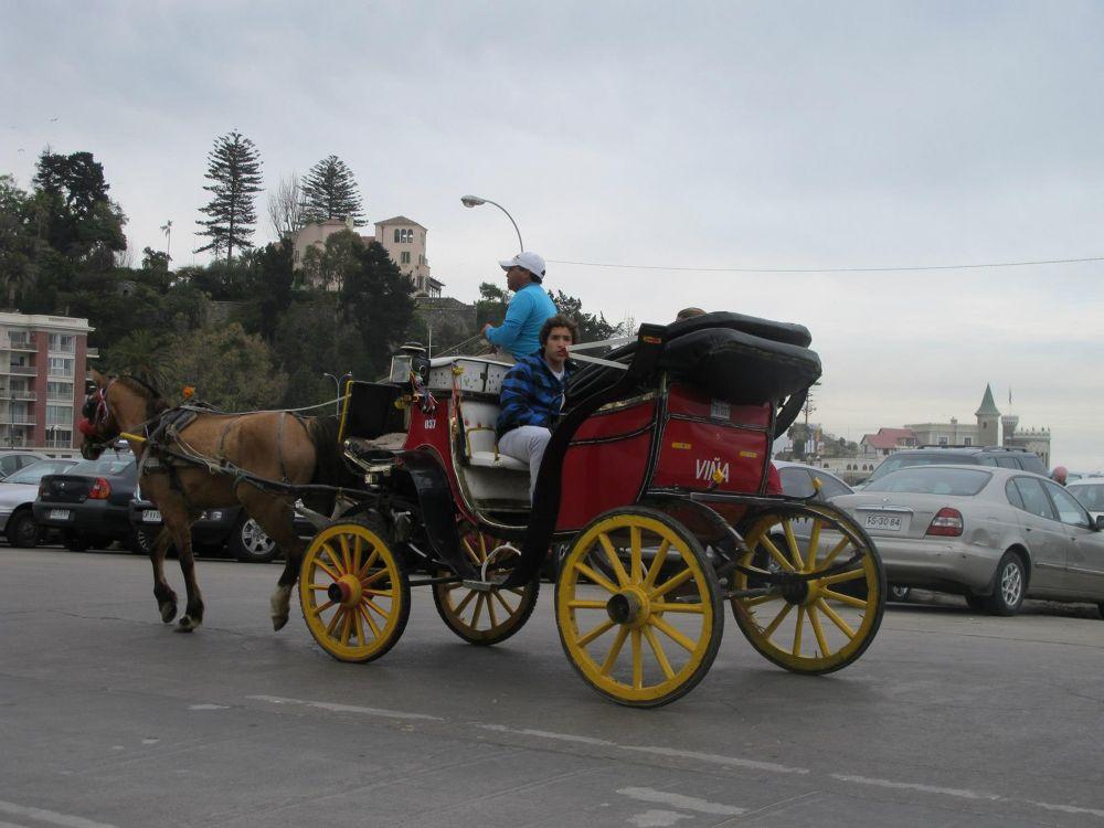 4587606815568 Take a ride in Victoria  by marigerayala