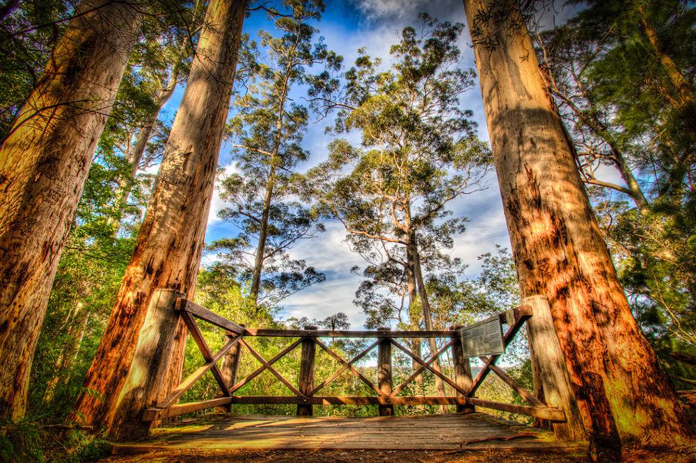 Warren-National-Park by gjkingphotography