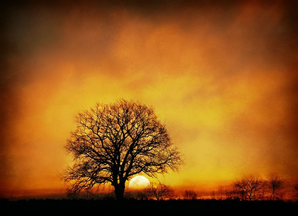 sunset by sillitilly