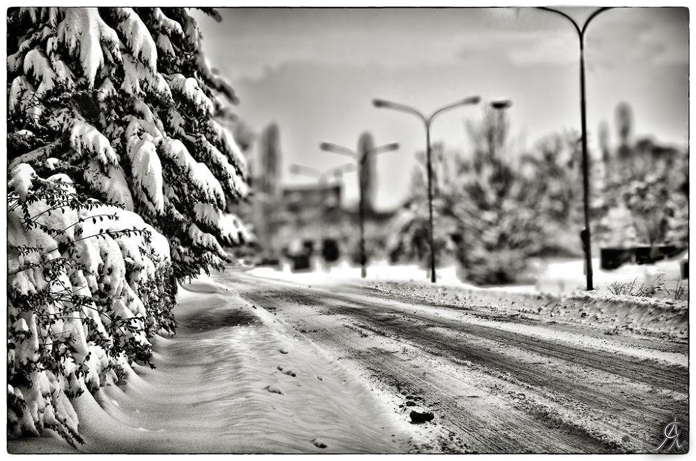 Under the snow by Alessandro Giorgi Art Photography