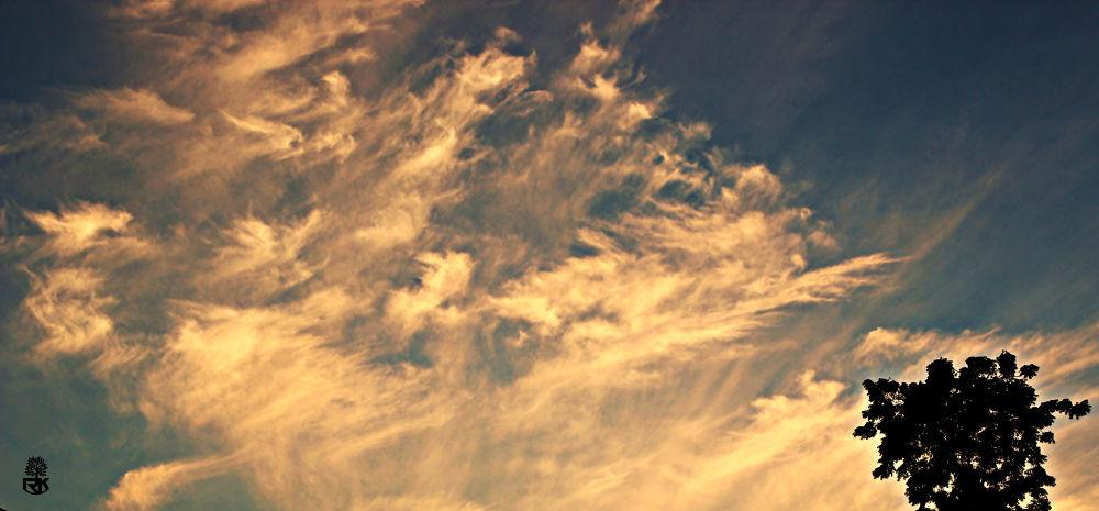 Patterned Overcast by RidzeKhan
