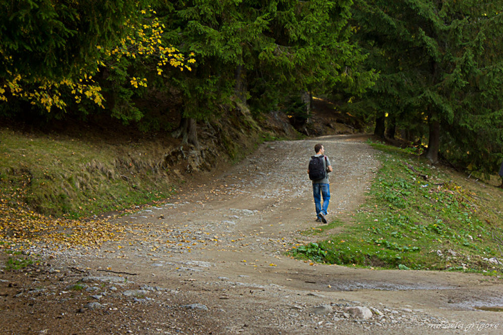 Walking in the autumn roads by mihaelagrigore