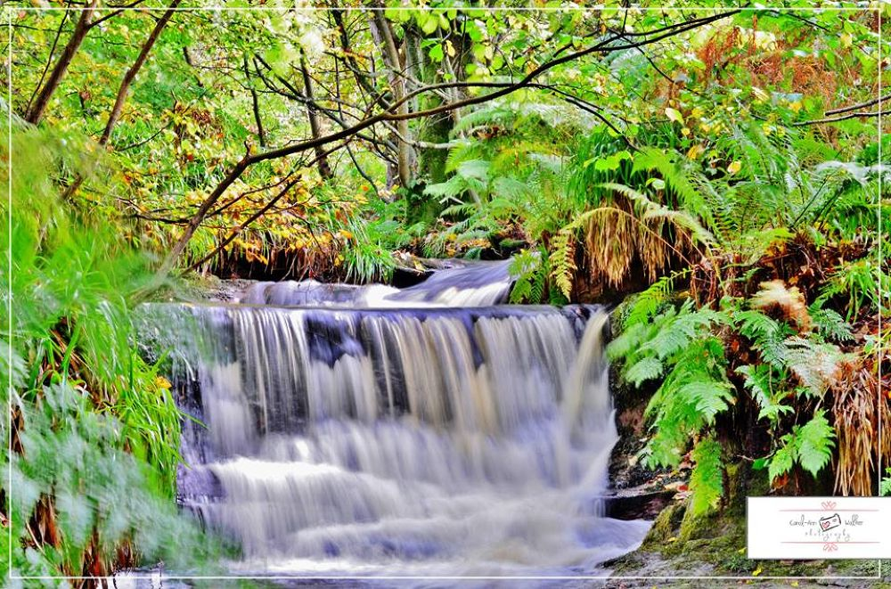 fairlie falls in ayrshire by Coco Grey Photography