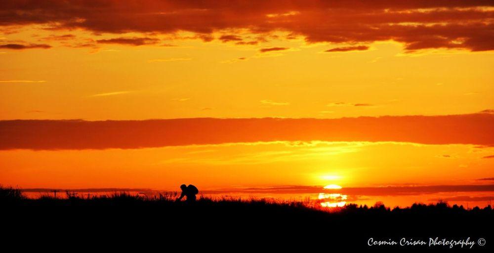 Photo in Random #sunset #bike #golden light #sun