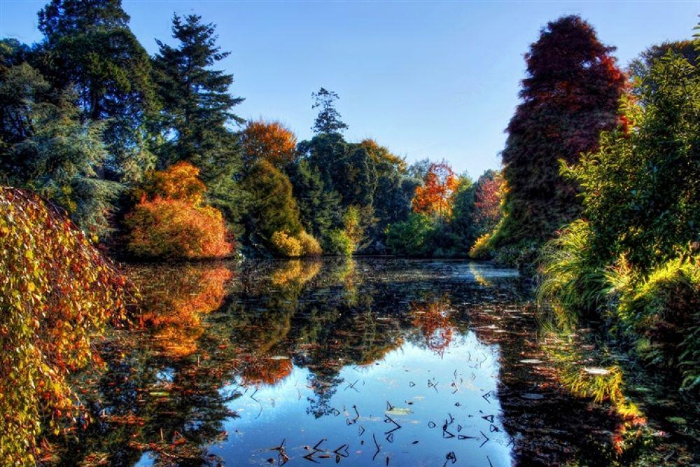 Altamount Garden Ireland__fused by photoartbysol
