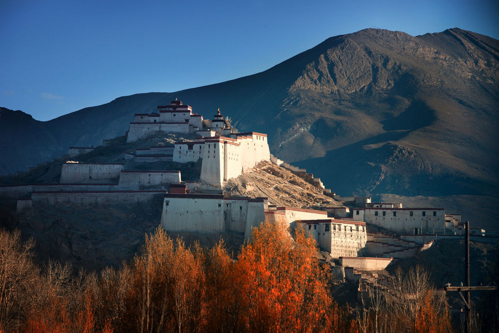 Tibet by Dung Le