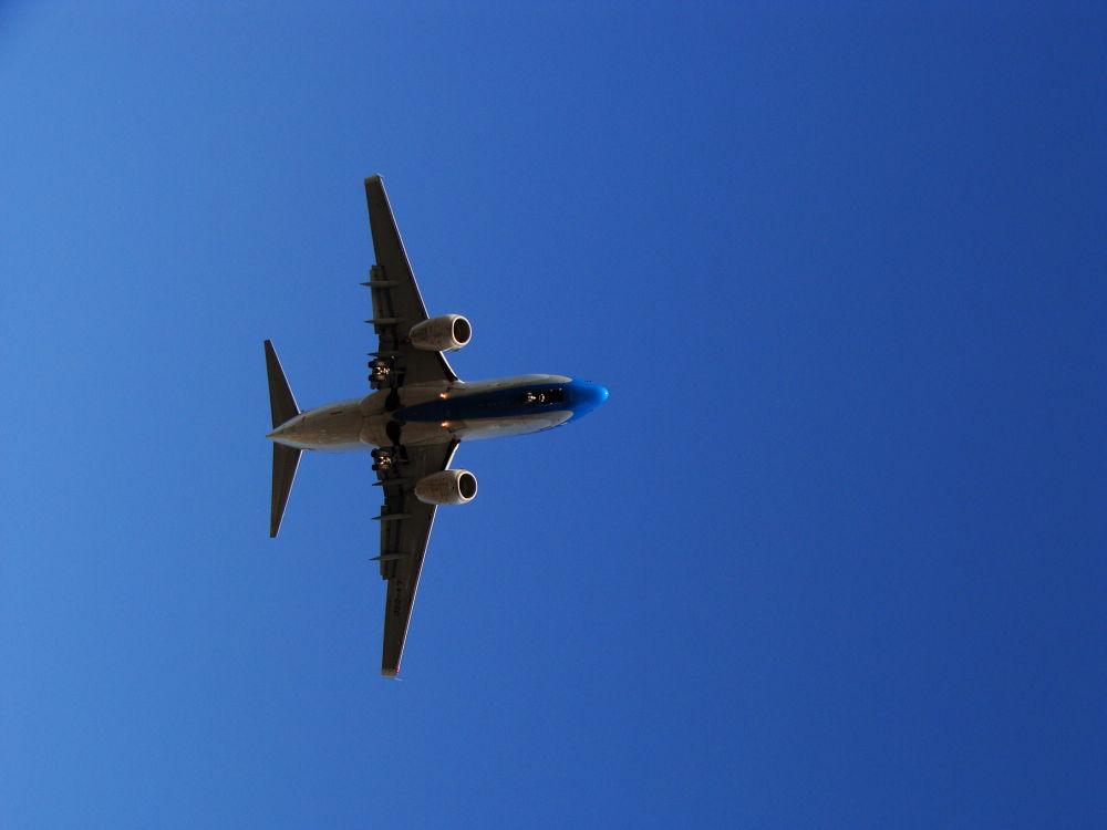 volando  by juliett