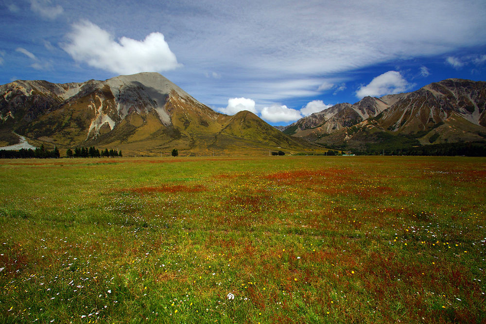 Grasmere Fields by DraganKeca