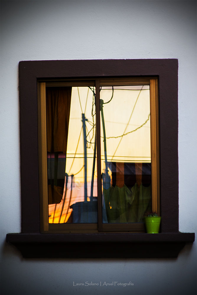 My window by Laura Solano