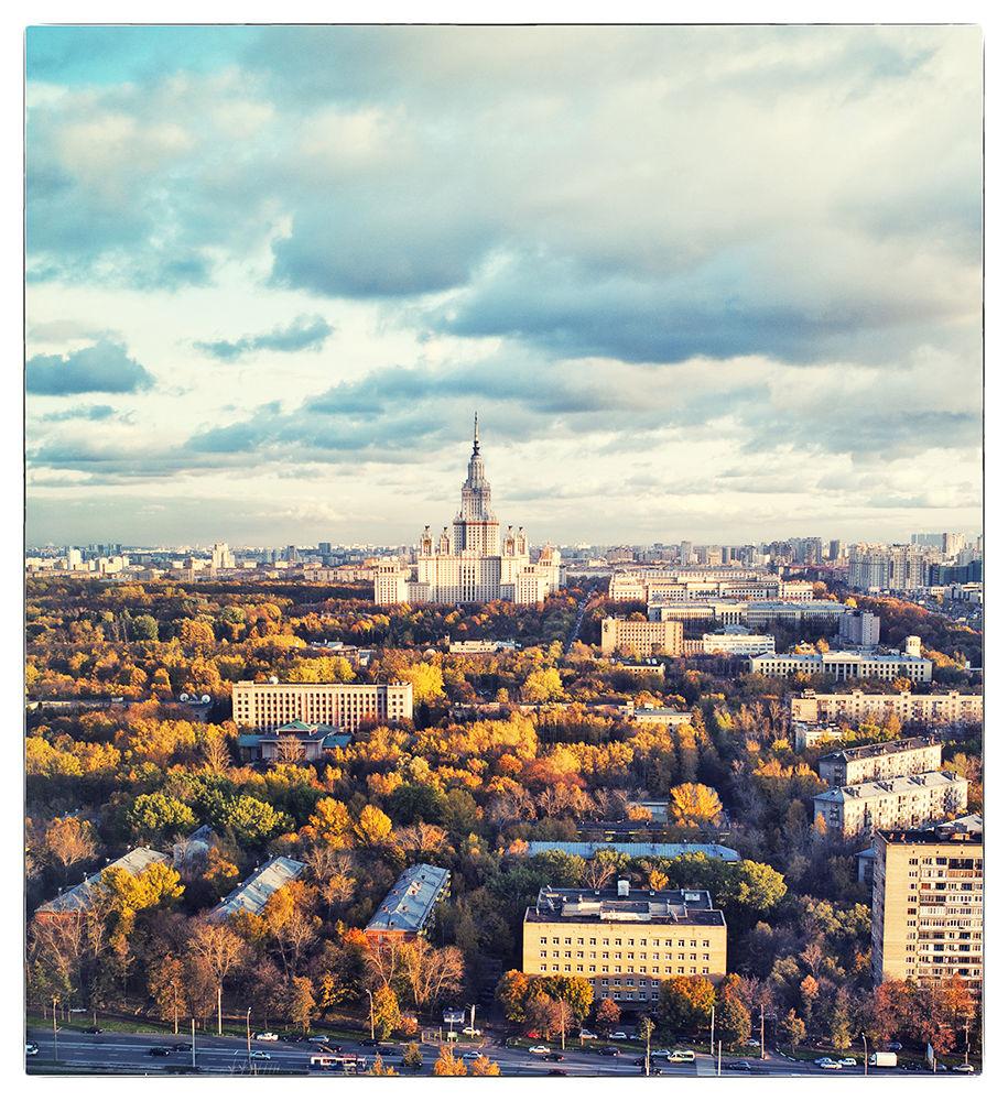 L100144011 by Vladimir Porsh