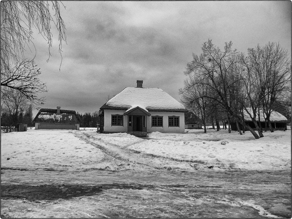 IMG_8455 by Vladimir Porsh