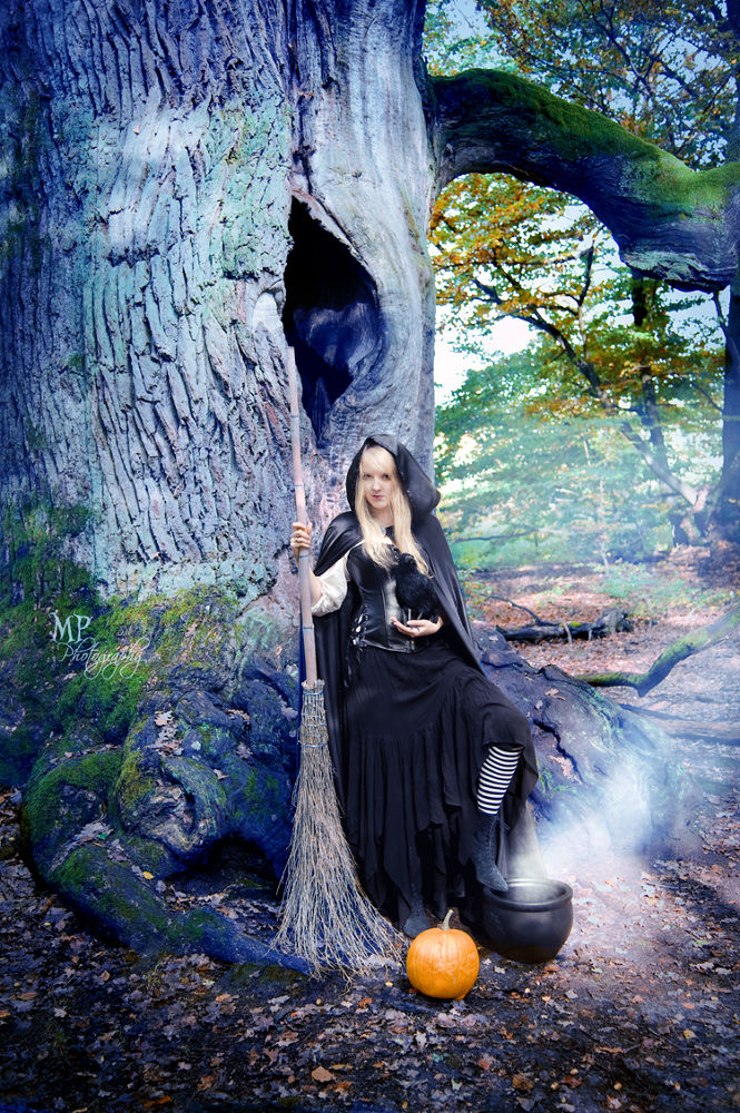 Photo in Portrait #witch #wicked #cauldron #raven #crow #fairytale #fairytale forest #halloween #dark #gothic