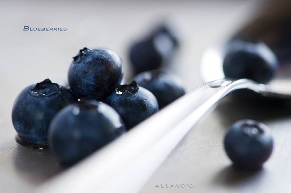 Blueberries by Allan Ooi