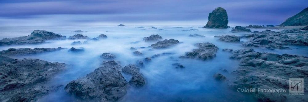Shores of Neptune by Craig Bill