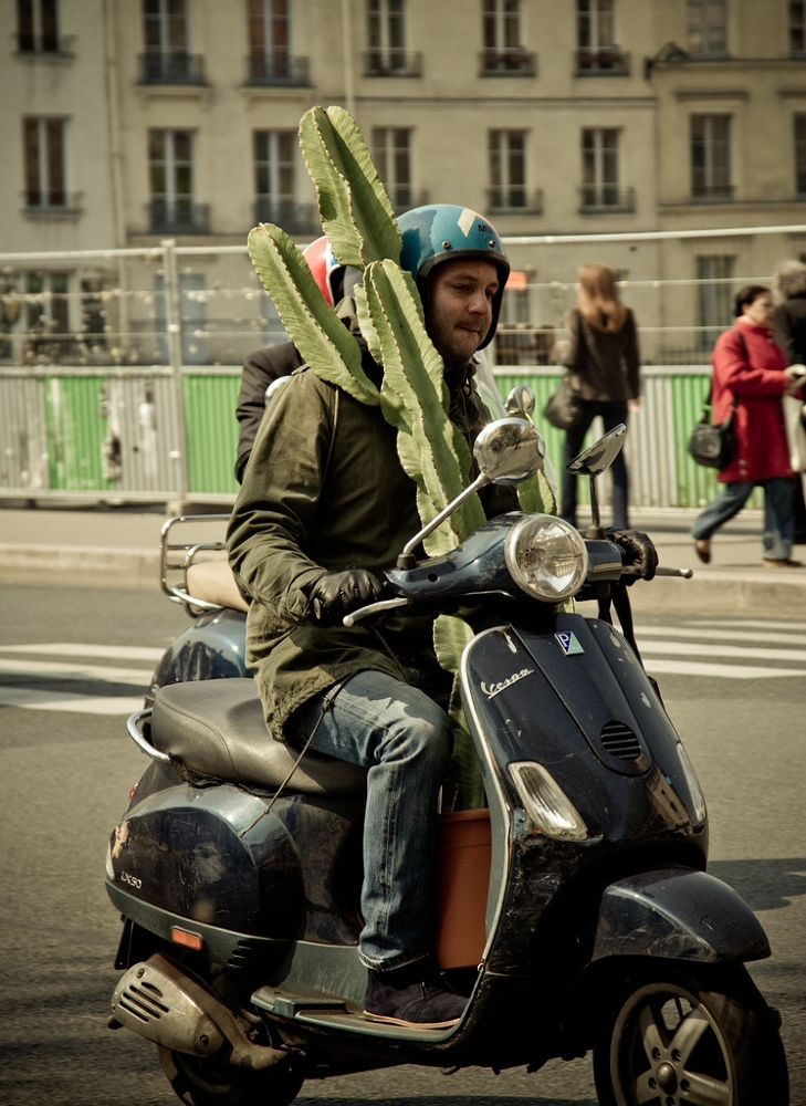 Photo in Street Photography #francia #france #paris