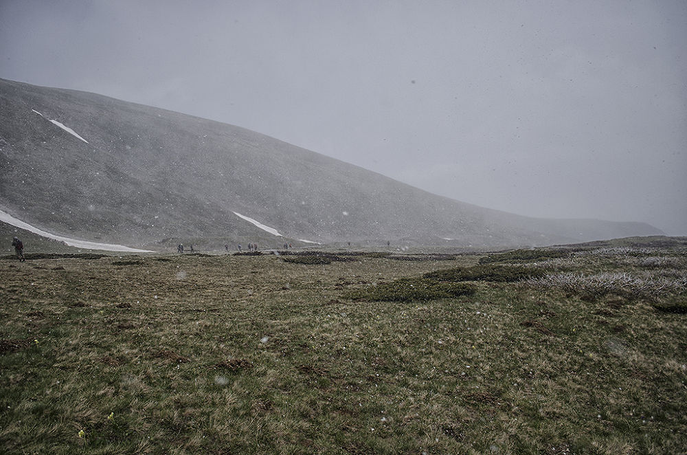 shar planina  by Горан Петровски