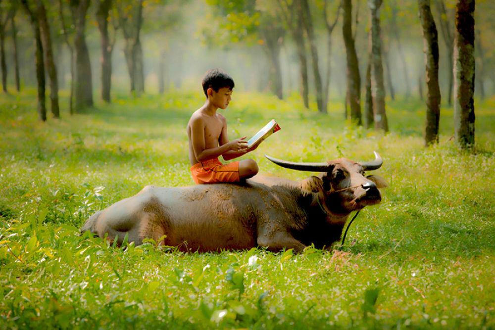 Photo in Random #reading #animal #human interest #nature