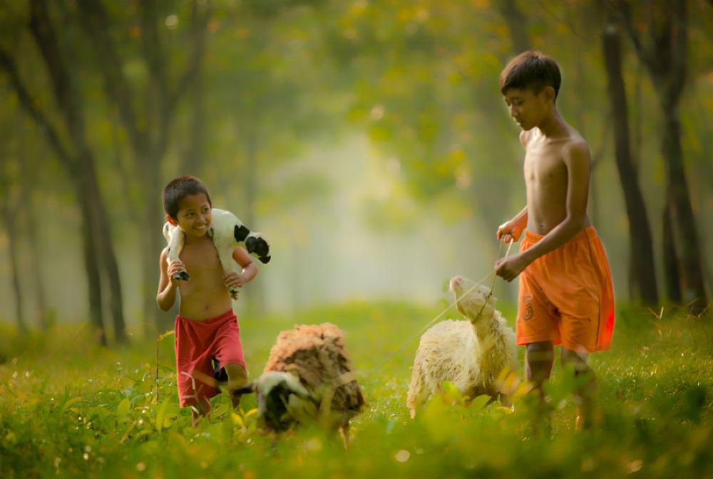 Shepherd by didinugroho9