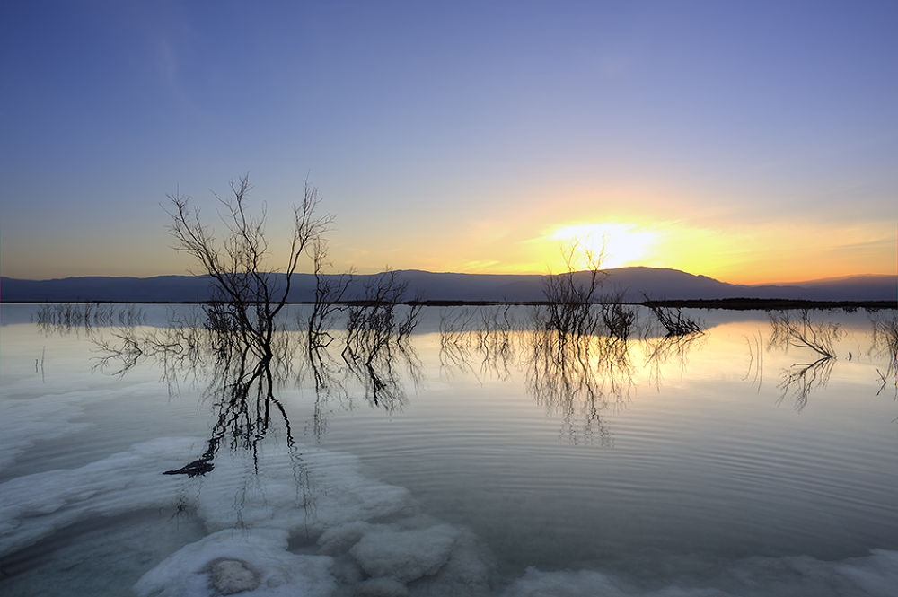 The Dead Sea by Eyal Amer