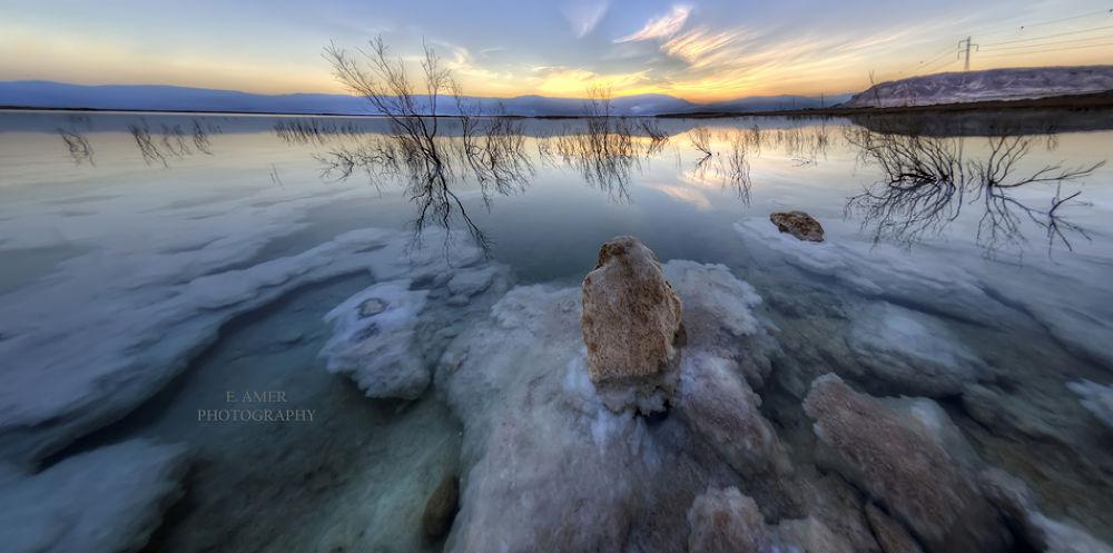 Dead Sea by Eyal Amer
