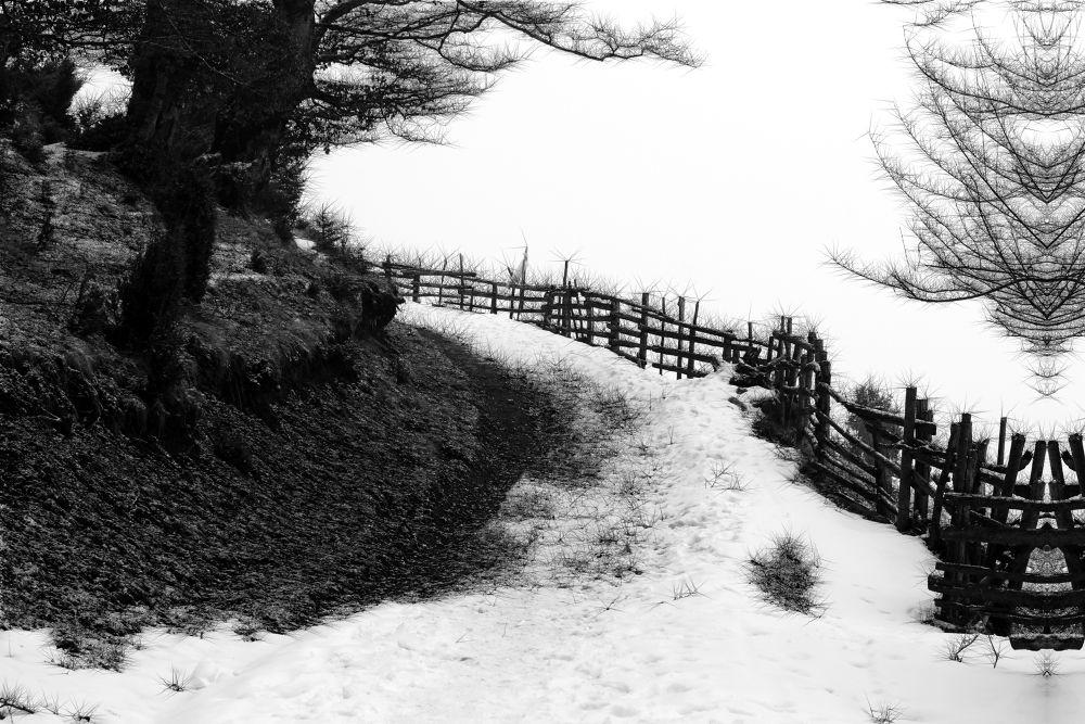 path of happiness by dianaadina10