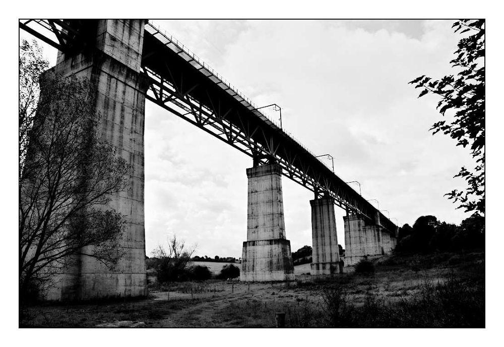 Bridge by Meint Brookman