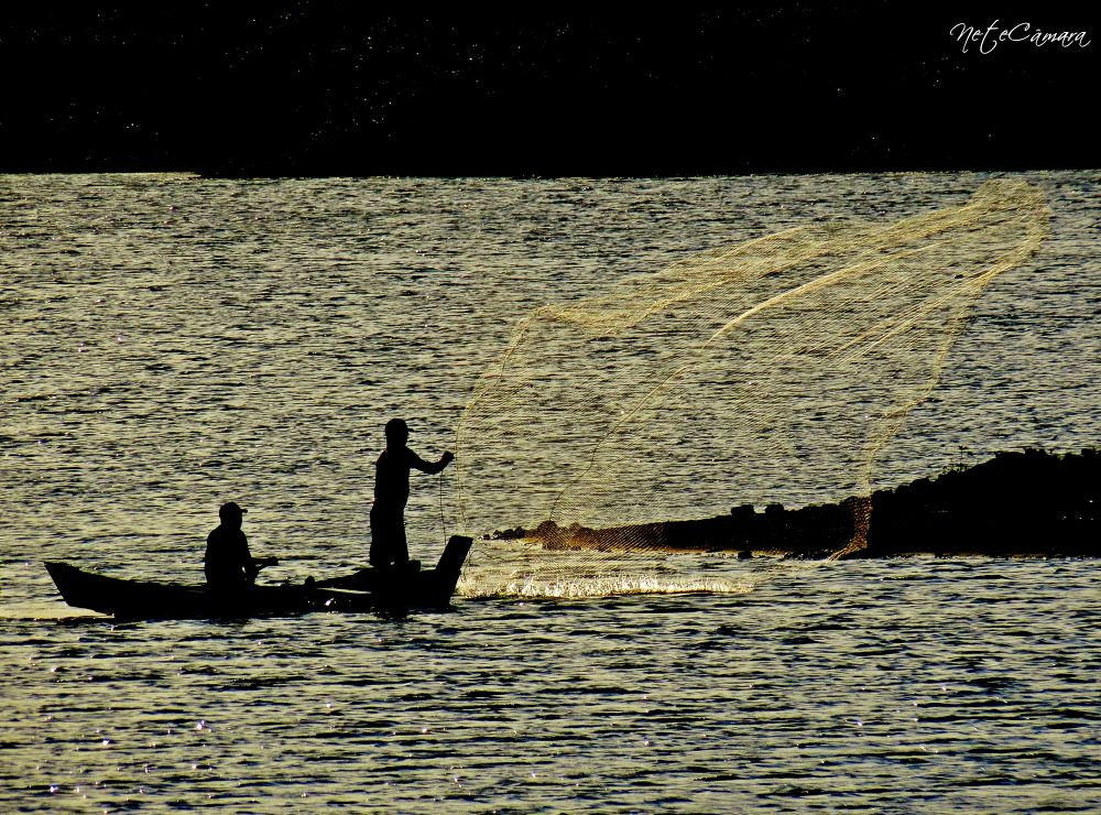 Photo in Nature #fishing #pesca #rn #brasil #ypa2013