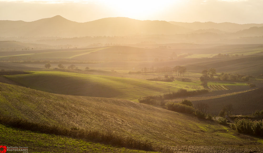 Luce by Raffaello Terreni Photography
