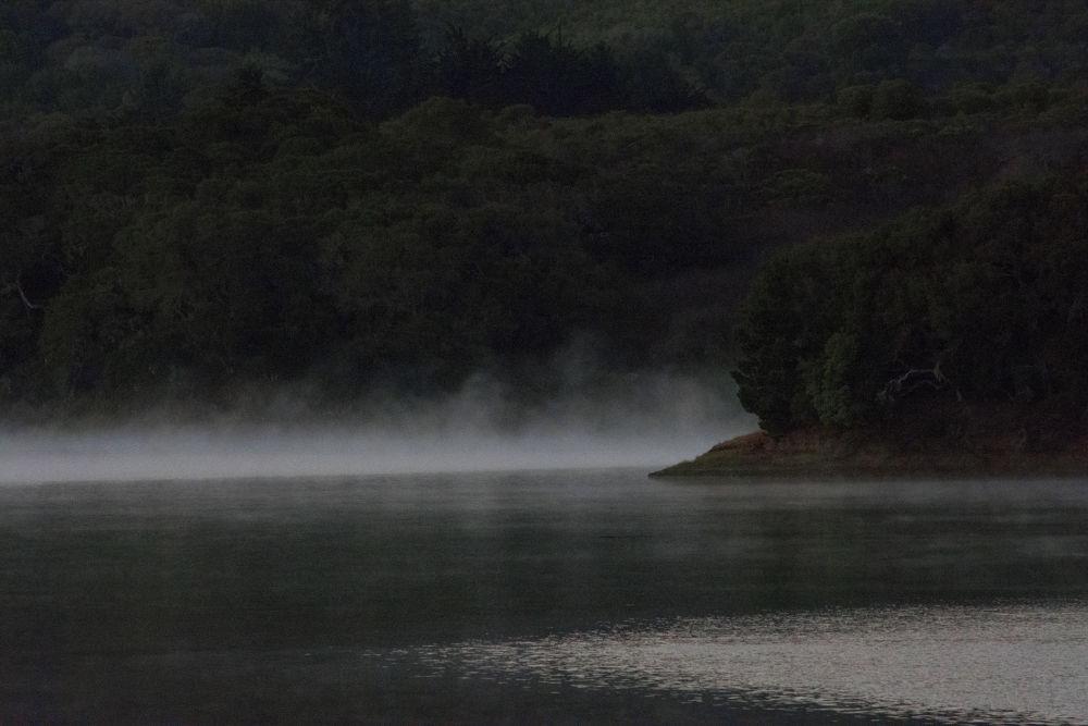 Mist on water  by Myles Tobin
