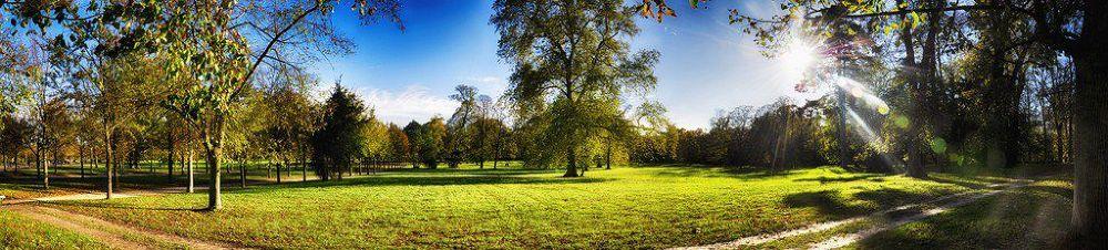 Parc de Versailles by tchaba