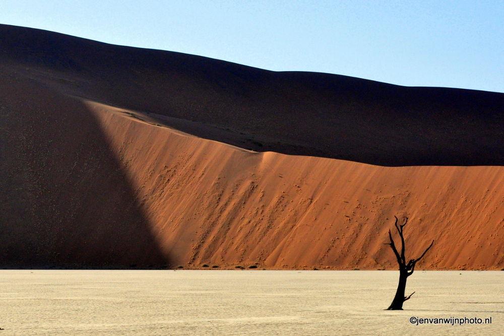 Photo in Landscape #deathvlei #sossosvlei #namibia #sand #sandhills #red earth #landscape #morning light #sunrise
