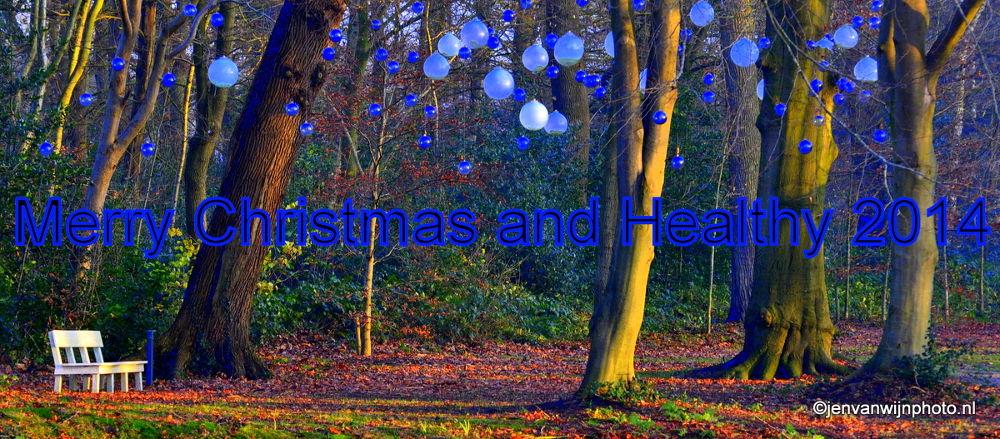Merry Christmas 2013 by Jen van Wijngaarden