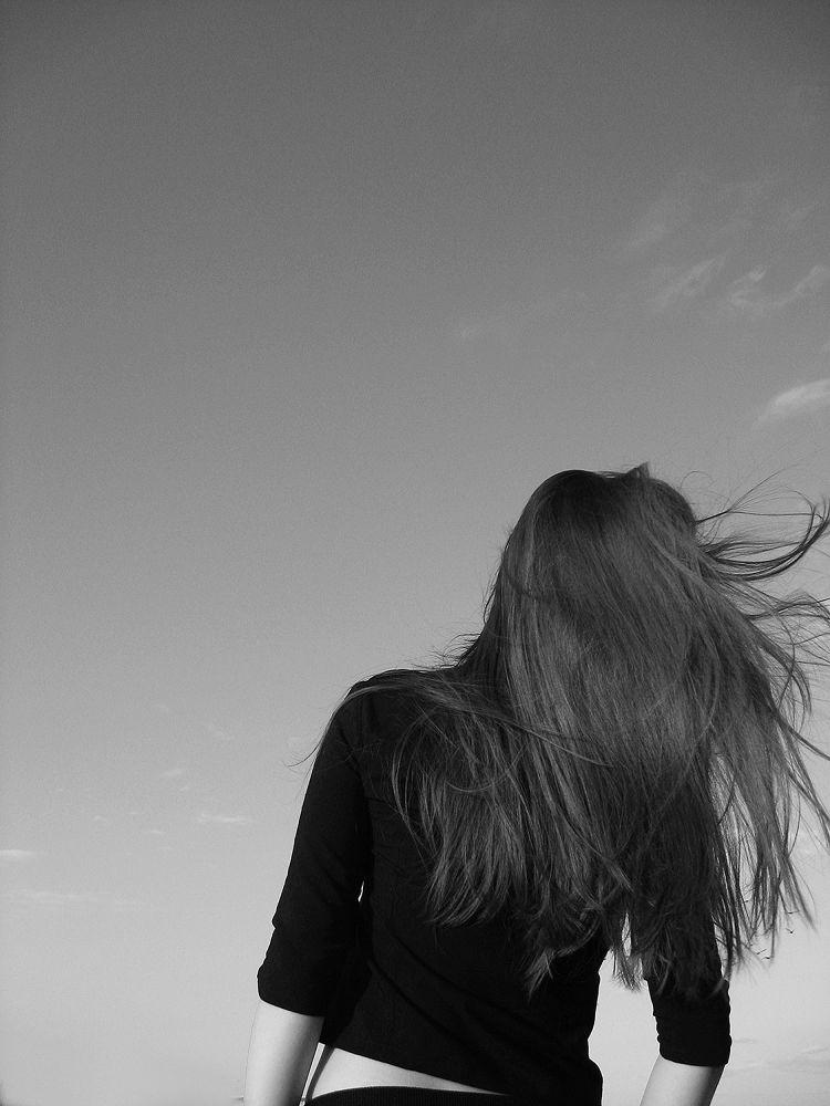 Wild Wind by parisa sedaghat
