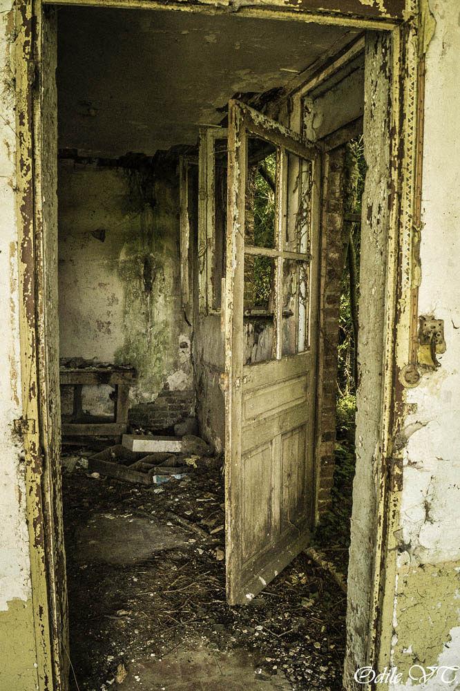 la petite maison  by Odilevantroys